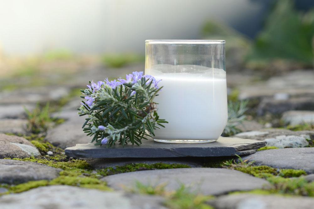 Frische Milch in Ratingen Hof Karpenhaus
